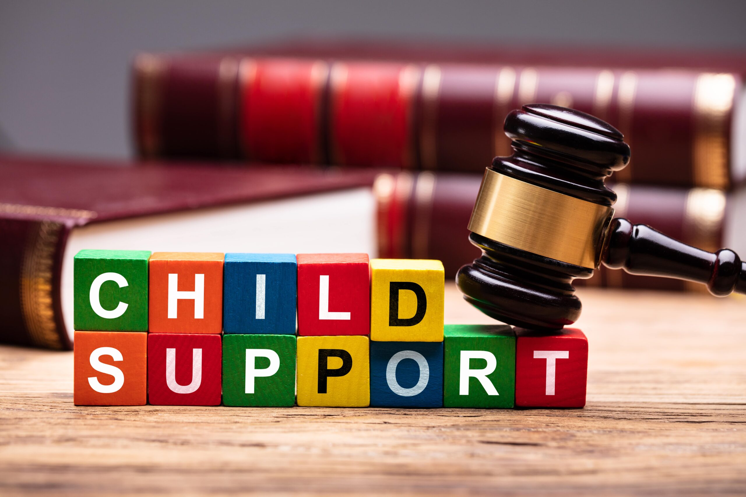 The Basics of Child Support